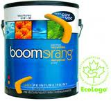 Boomerang recycled Paints available at St. Lawrence Pro Hardware